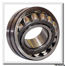 240 mm x 440 mm x 120 mm  FAG 22248-B-MB FAG Bearing