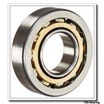 100 mm x 250 mm x 58 mm  FAG NJ420-M1 + HJ420 FAG Bearing