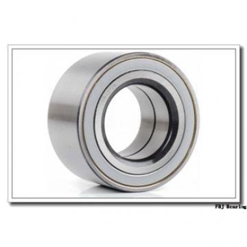 20 mm x 47 mm x 18 mm  FBJ NJ2204 FBJ Bearing