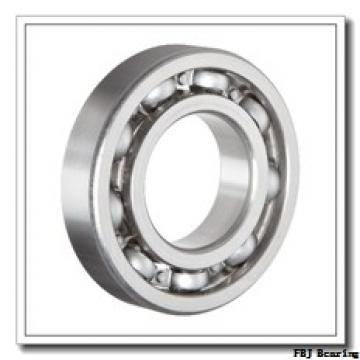 45 mm x 75 mm x 10 mm  FBJ 16009-2RS FBJ Bearing
