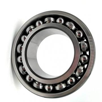 Good Porformance Double Row Angular Contact Ball Bearing (3204)