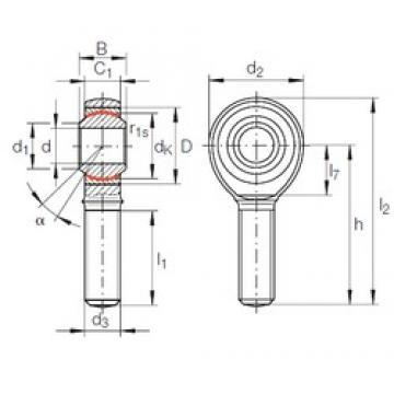 25 mm x 47 mm x 31 mm  INA GAKFR 25 PW INA Bearing