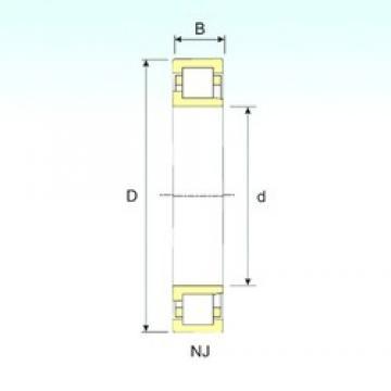 95 mm x 170 mm x 43 mm  ISB NJ 2219 ISB Bearing