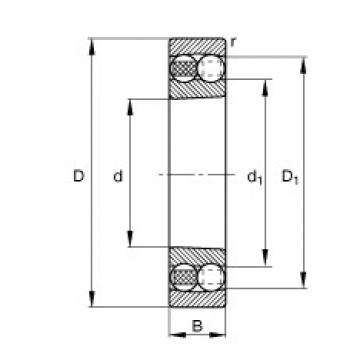 45 mm x 100 mm x 25 mm  FAG 1309-K-TVH-C3 FAG Bearing