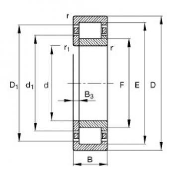 17 mm x 40 mm x 16 mm  FAG NUP2203-E-TVP2 FAG Bearing