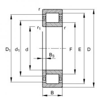 30 mm x 62 mm x 20 mm  FAG NUP2206-E-TVP2 FAG Bearing