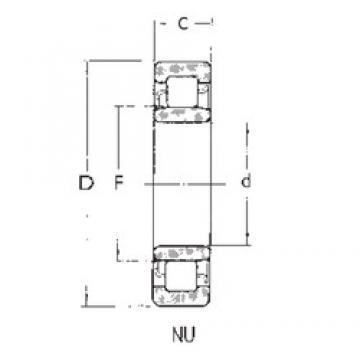 55 mm x 100 mm x 21 mm  FBJ NU211 FBJ Bearing