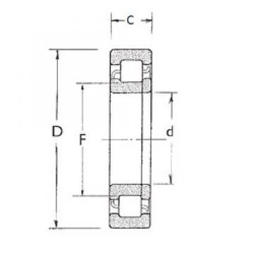 45 mm x 100 mm x 25 mm  FBJ NUP309 FBJ Bearing