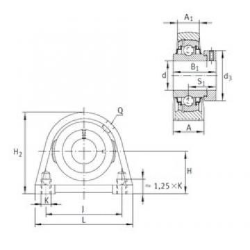 INA RSHE25-N INA Bearing