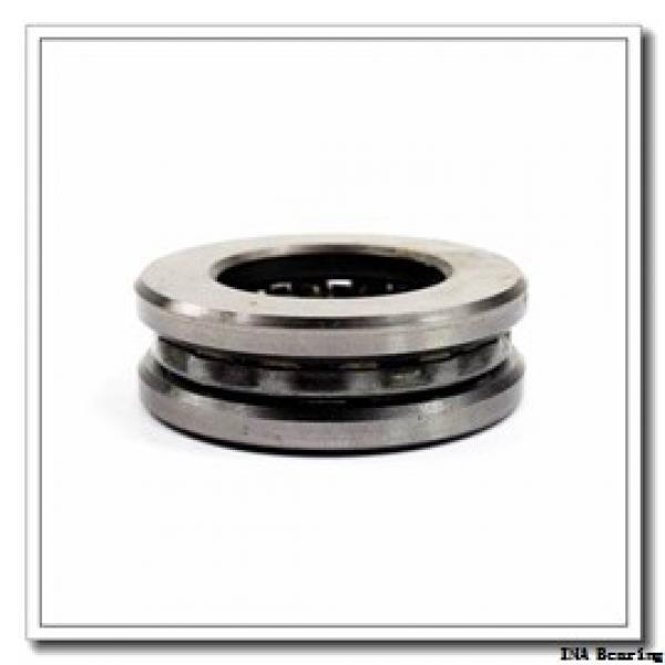 25 mm x 47 mm x 30 mm  INA SL045005-PP INA Bearing #1 image